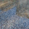 tennessee-river-gravel-exposed-aggregate-decorative-concrete-with-surface-ground-smooth