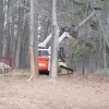 arborist work on farm