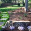 stepping stone and rish moss walkway