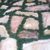 stepping-stones and Dwarf mondo grass walkway