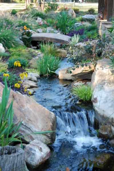 koi pond stream
