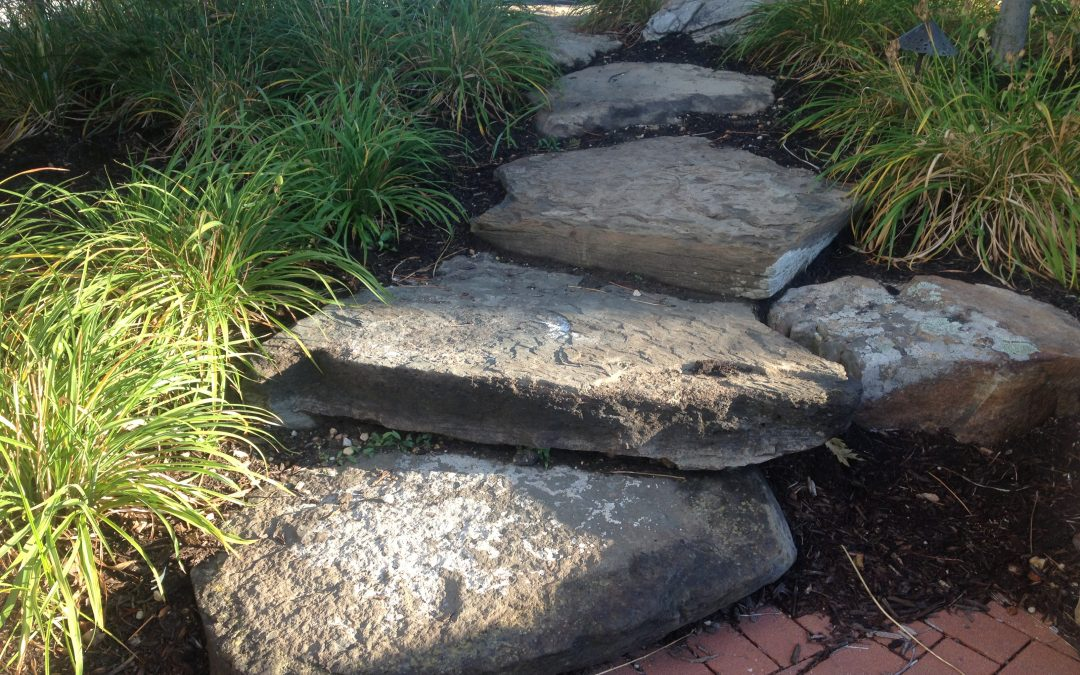 Outdoor Life – Landscape Engineering