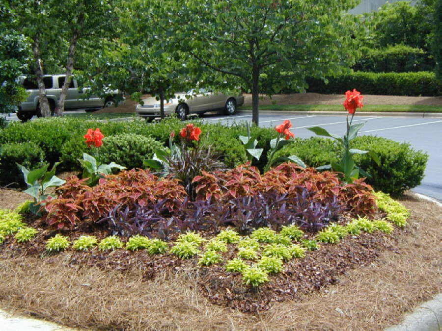 Custom landscape designs by outdoor life inc for Custom landscaping