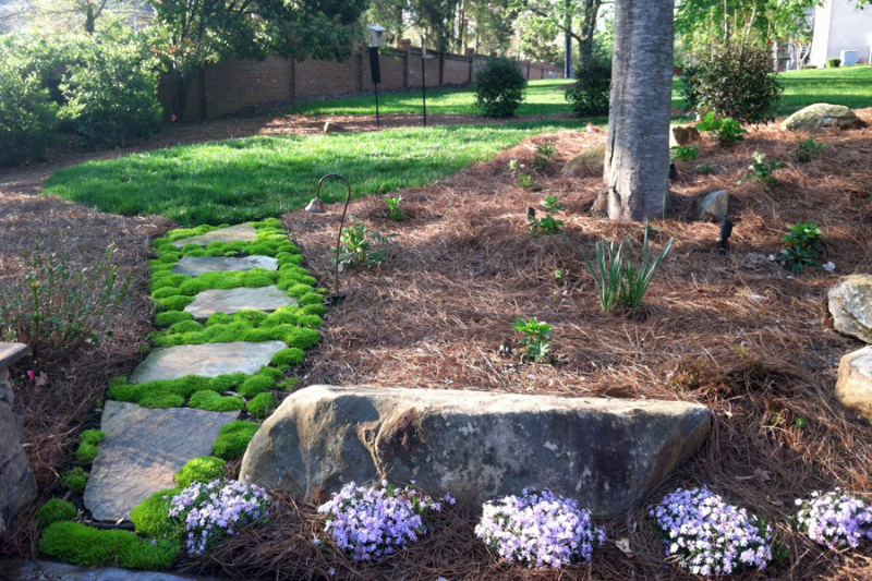 We offer more contract landscaping services than any other landscape contracting company.