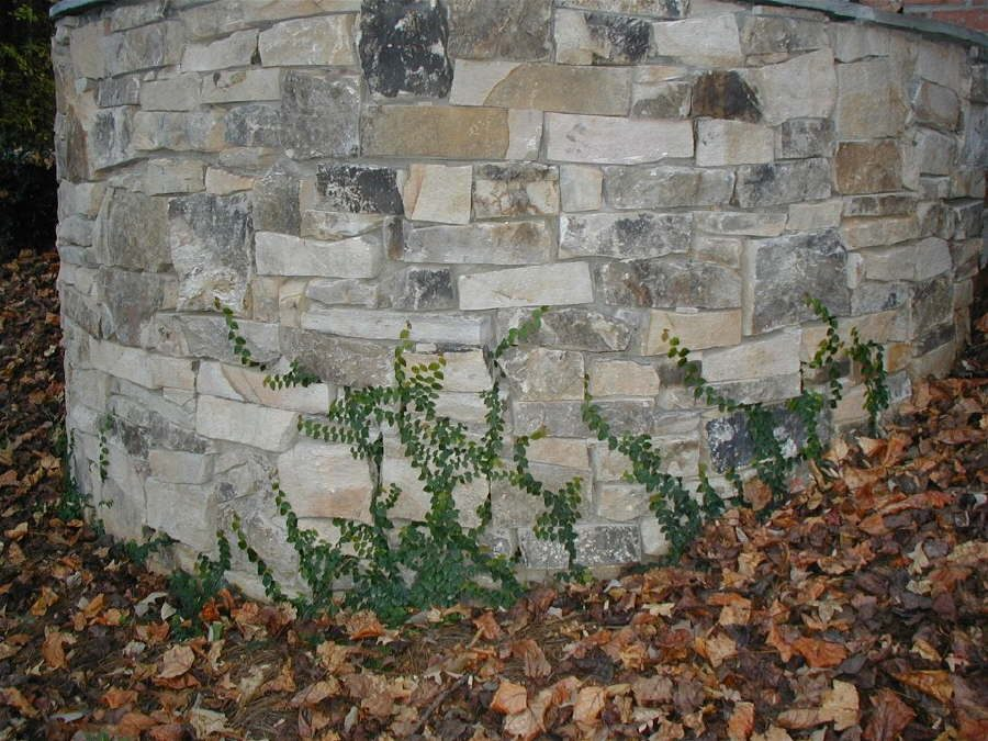 Retaining Wall – Outdoor Life Inc.