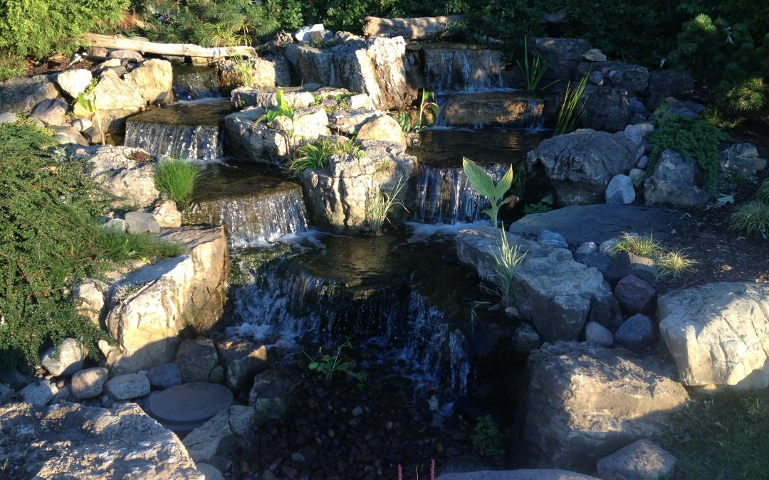 Water Features and Landscaping – Outdoor Life Pond Contractors