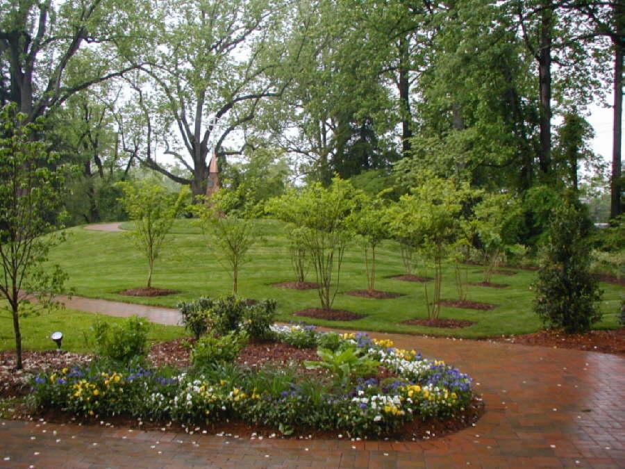 landscape-planning-landscaping-renovation