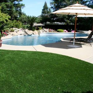 Lawn - Turf Grass - Synthetic putting greens