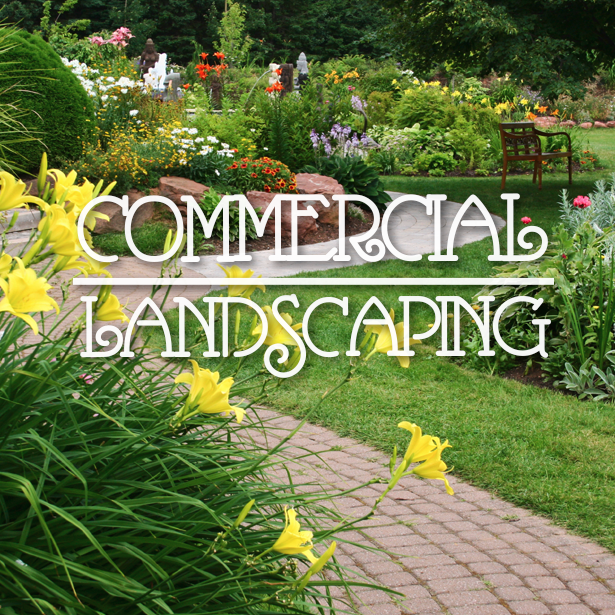 Commercial Landscaping – Outdoor Life, Inc. #CommercialLandscaping