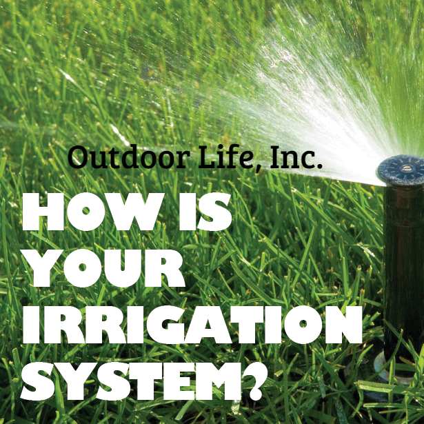 How's your irrigation system?  #Irrigation