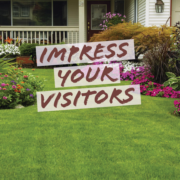 Impress Your Friends With a Beautiful Landscape!