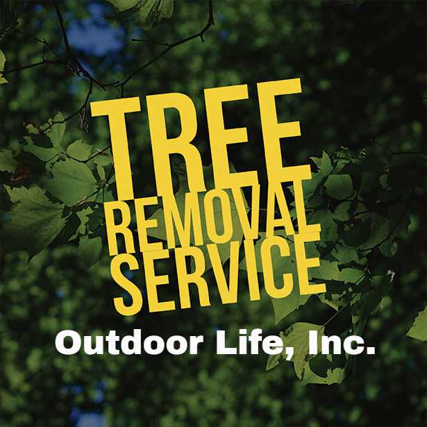 Outdoor Life Tree Removal and Clean Up Services #OutdoorLife #TreeRemoval