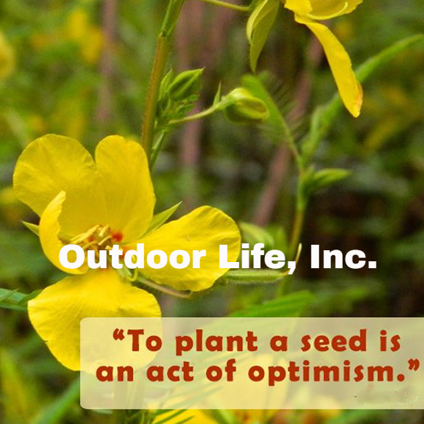 To Plant A Seed Is An Act Of Optimism