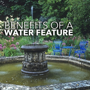 Benefits of a water feature