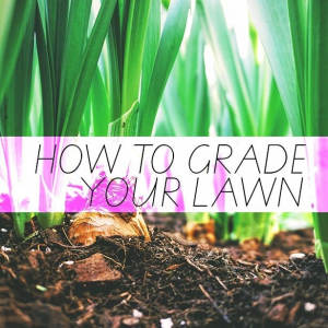 How To Grade Your Lawn - Outdoor Life, Inc.