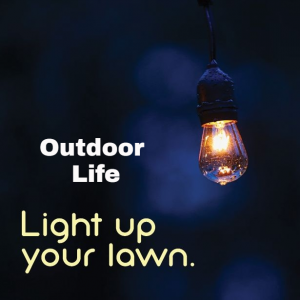 Light up your lawn