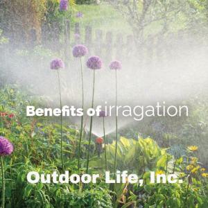 Custom landscape irrigation system