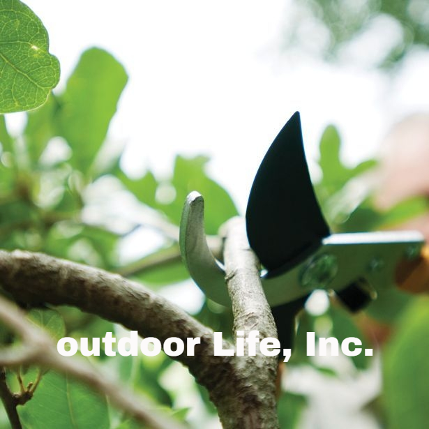 Tree Pruning and Removal Services – Outdoor Life, Inc.